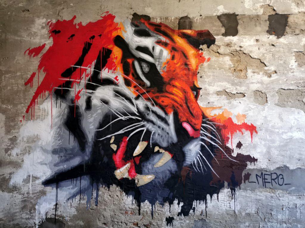 Graff pour Bayart